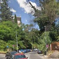 Roma, cade albero a Valle Aurelia, un ferito lieve