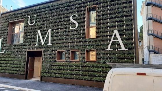 Roma come Milano, e in Prati spunta un piccolo 'bosco verticale'