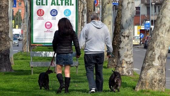 """Coronavirus, parte l'assistenza per animali domestici della Lav. La Asl: """"Dopo la passeggiata non lavate le zampe dei cani con la candeggina"""""""