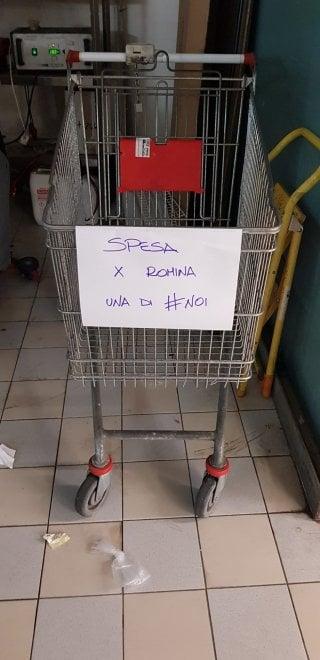 Coronavirus Roma, un carrello per Romina e 1500 euro: gara di solidarietà  dopo l'appello delle associazioni