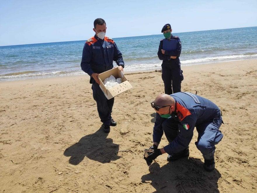 Terracina, trovato e soccorso in spiaggia un uccello migratore raro nel Lazio