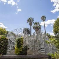 Orto Botanico, riaperti i cancelli dell'oasi più bella