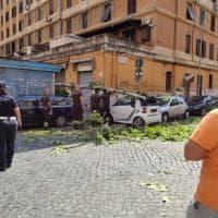 Roma, albero si schianta sul marciapiede a Casal Bertone: auto danneggiate