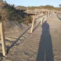 Sabaudia, danneggiata la passerella per l'accesso alla spiaggia dei disabili