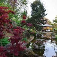 L'Orto Botanico di Roma apre alla degustazione dell'olio extravergine