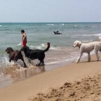 Sabaudia, inaugurata la spiaggia