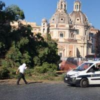 Roma, pino cade su una Mercedes in piazza Venezia