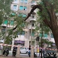 Roma, ramo si stacca da un albero in viale delle Province: è il secondo in un mese