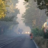 Roma, fiamme a Tor di Valle: chiuse via del Mare e Ostiense. Interrotta