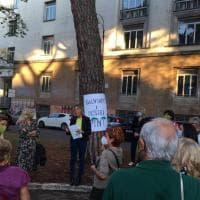 Flash mob per difendere i pini di Roma