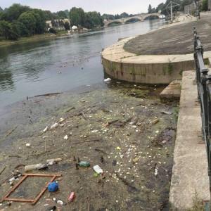 Inquinamento delle acque del po