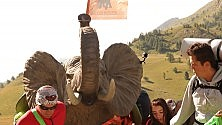 Ft/ L'elefante di plastica sui sentieri di Annibale