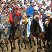 Palio d'Asti: la Procura ordina controlli a tappeto nelle stalle dei cavalli