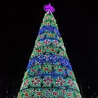 Diciotto metri di legno, metallo e colori: l'albero per il Natale di Torino