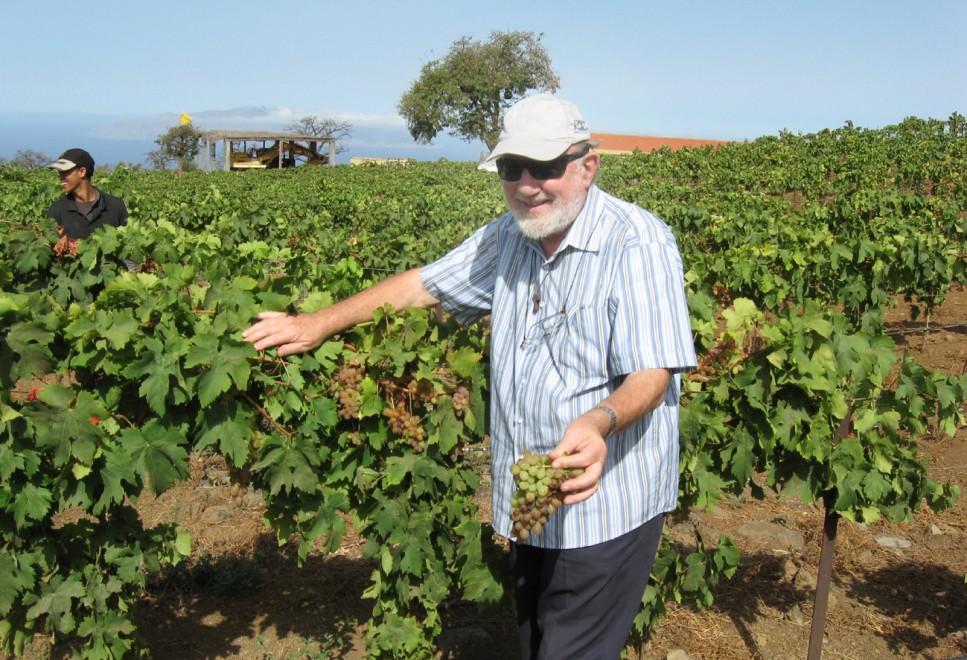 Il frate che produce vino all'isola di Capo Verde