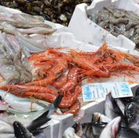 """""""Ok, il pesce è giusto"""", guida antifrode dell'Istituto Zooprofilattico"""