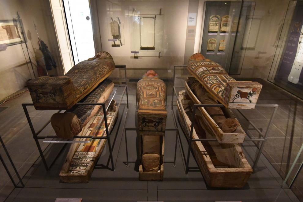 torino ecco le prime immagini del nuovo museo egizio 1