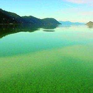 Microalga Klamath, il super-cibo arrivato dal lago che rende sani e belli