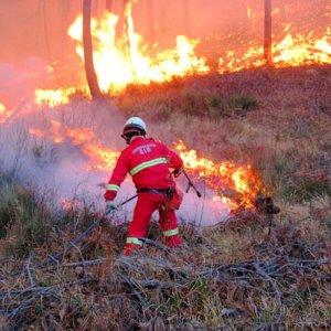 I cavi dell'alta tensione appiccano le fiamme nell'Eporediese: i forestali denunciano l'Enel