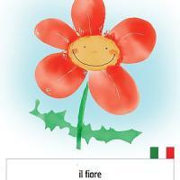 Torino, 150 parole nel dizionario per i piccoli profughi: cercansi disegnatori per illustrarle