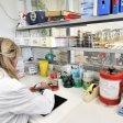 Istituto Zooprofilattico,  un nuovo polo  per la sicurezza alimentare