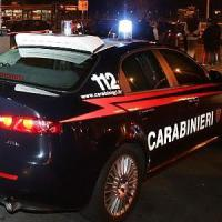 Beinasco, sorpresi a rubare in azienda tentano di investire carabiniere