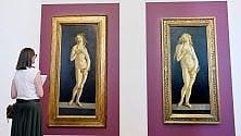 """""""Venere & Venere"""",    in mostra a Torino le due """"sorelle"""" di Botticelli"""