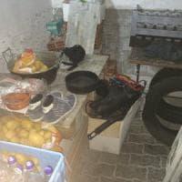 """Torino, cibo marcio e zero igiene: blitz della polizia nella """"pizzeria da incubo"""""""