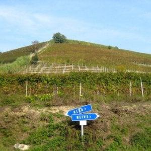 L'egemonia del Barolo mette a rischio di altri vini delle Langhe