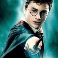 Arriva Harry Potter e le piccole librerie sfidano Feltrinelli