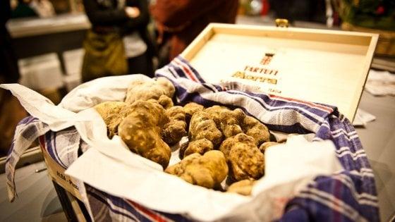 La Ue dà ragione ad Alba: il tartufo è un prodotto agricolo, giù l'Iva