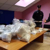 Torino, il garage della droga:  maxisequestro di marijuana e cocaina