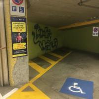 Torino, campagna di Gtt per il rispetto dei posteggi riservati ai disabili