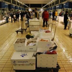 Torino blitz al mercato ittico di porta palazzo maxi - Mercato coperto porta palazzo orari ...