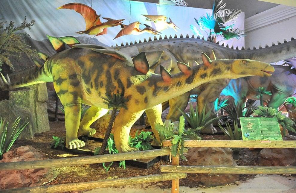 Alla promotrice di torino i dinosauri sono a grandezza for Piani di fattoria a grandezza naturale