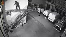 I banditi acrobati neutralizzano l'antifurto: quattro arresti