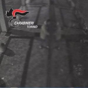 Torino, un video incastra lo stalker piromane per vendetta