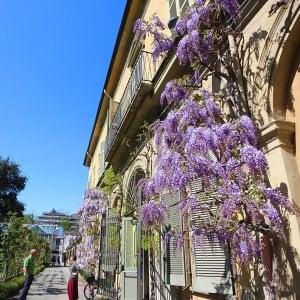 Torino in fiore, sapori e colori per una tavola di Pasqua in salute