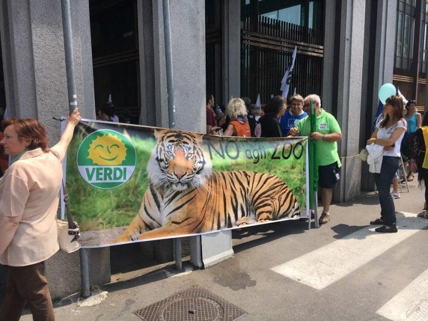 """Torino, trecento """"No Zoo"""" al corteo contro il progetto di Zoom a Parco Michelotti"""