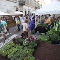 Il centro di Torino come un grande giardino: assalto a