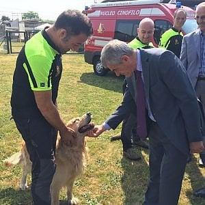 Torino, la scuola che addestra i cani a salvare  la gente nei terremoti e nelle valanghe