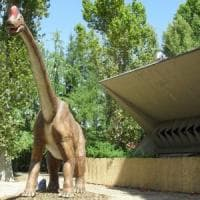 Torino: fiamme nell'ex zoo di parco Michelotti, brucia il rettilario