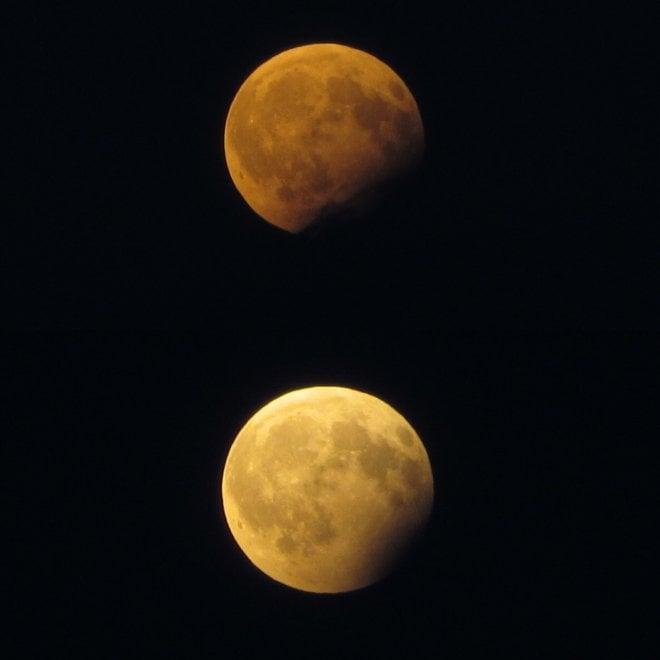 L'eclissi di luna nel cielo sopra Torino: i suggestivi scatti dei lettori