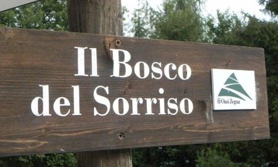 Un weekend tra gli alberi del Bosco del Sorriso per ripartire in armonia