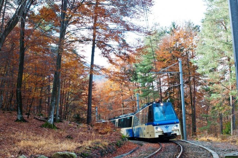 Tra Piemonte e Svizzera il treno del foliage: 52 chilometri slow in mezzo alle meraviglie d'autunno