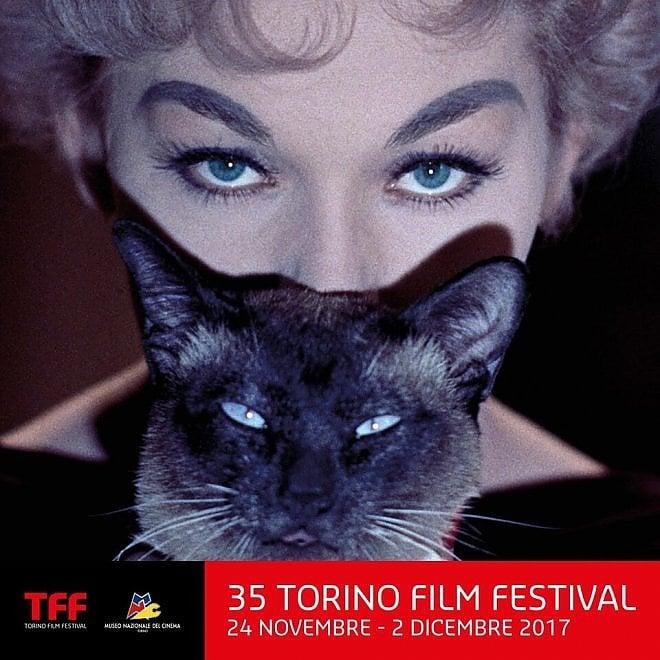 Dedicato ai gatti il manifesto del 35° Torino Film Festival