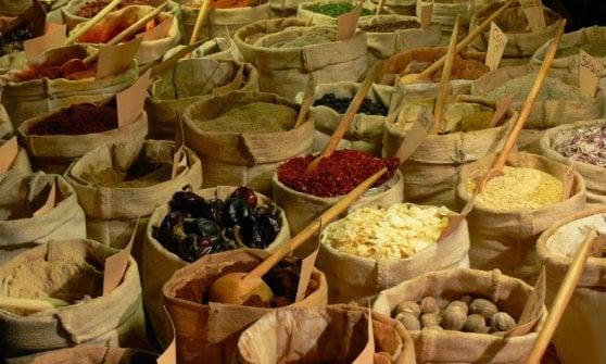 Alla scoperta delle cento piante utili all'uomo in mostra all'Orto Botanico di Torino