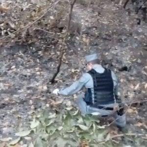 """Il capo dei carabinieri forestali in Val Susa: """"Incendi, trovati inneschi nei boschi di Mompantero"""""""