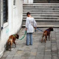 L'amico del cane lo si vede nel momento del bisogno
