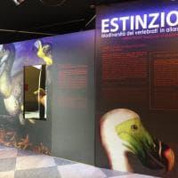 """In piazza Castello gli animali nella """"lista rossa"""" delle estinzioni"""